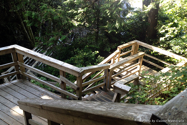 A series of stairs and boardwalks along Tonquin Trail bring hikers to a serene beach