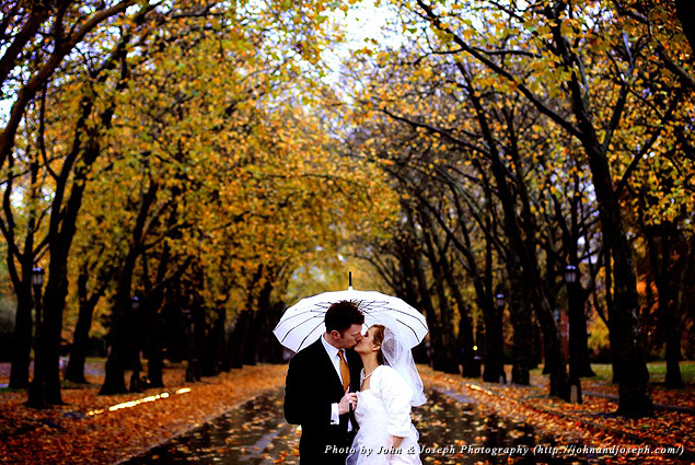 A bride and groom kiss under an umbrella on a tree-lined street
