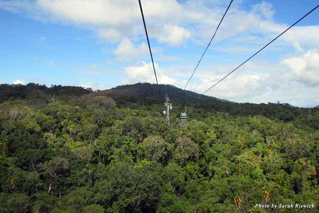 The Skyrail to Kuranda