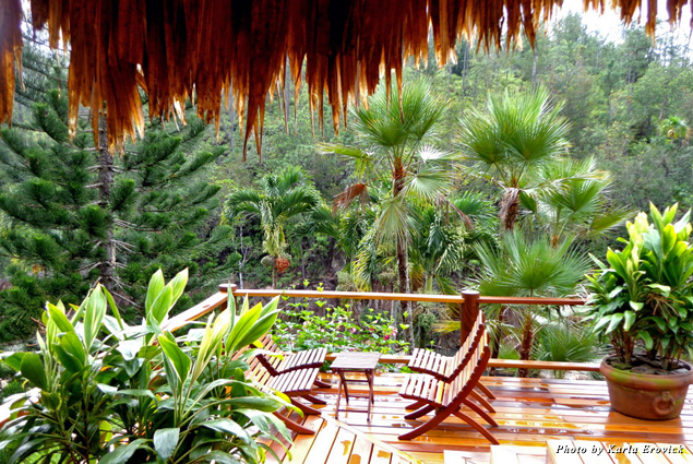 Chairs on a deck overlooking the rainforest