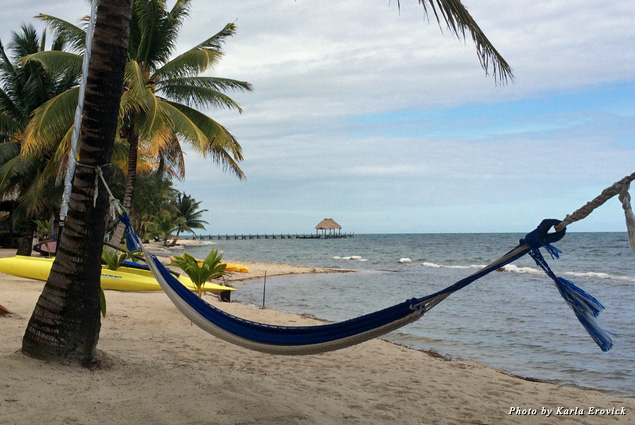 A hammock hangs between two palm trees on the beach