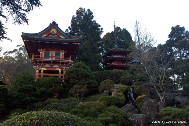 Beautiful buildings rise above a waterfall and trees in the Japanese Tea Garden