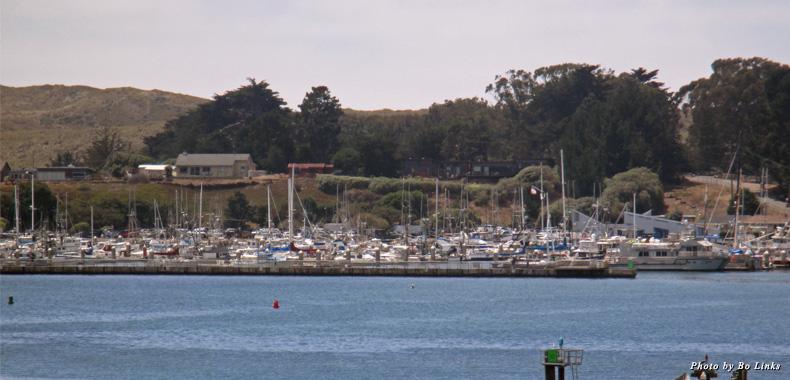 Boats docked in Bodega Bay