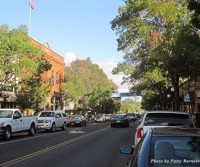Tree-lined Main Street in St. Helena