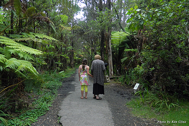 Walking through the forests of the Big Island of Hawaii is a memory that will last a lifetime