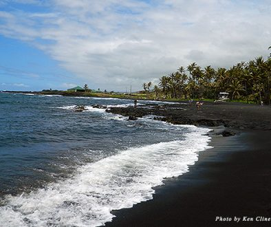 The black sands of Punalu'u attract tourists and turtles alike