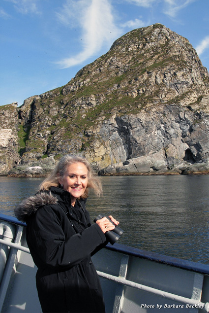 Puffin and sea eagle spotting in the Gjesvaerstappan islands nature preserve, Norway's best birding cliffs