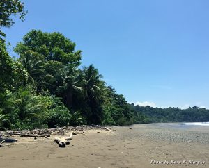 Kura's private beach