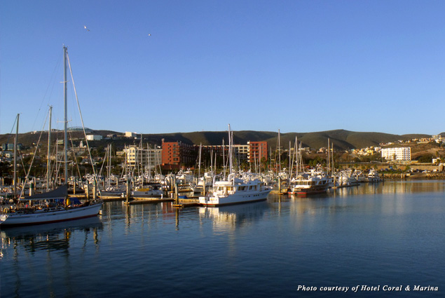 Boats docked in the marina beside Ensenada's Hotel Coral