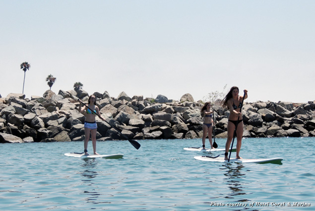 Paddle boarding in the marina