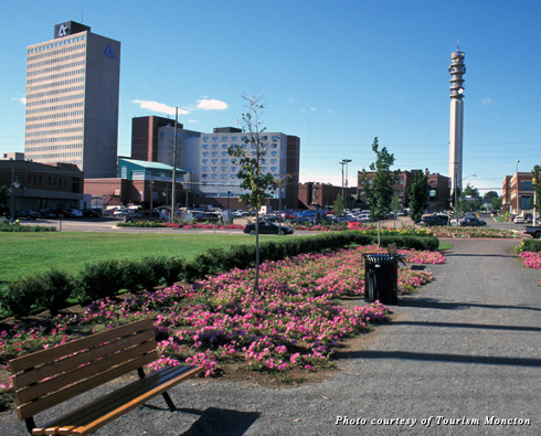 The promenade in downtown Moncton