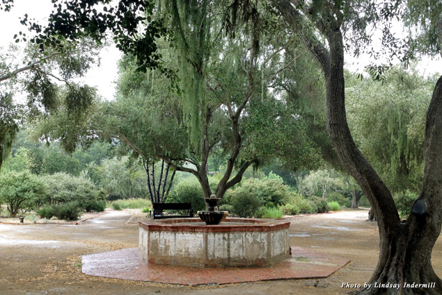 Southern Gothic meets California Coastal in gardens of La Purisma Mission