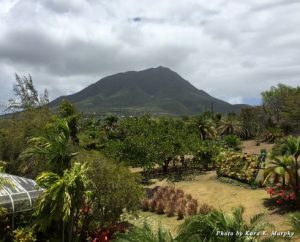 View of Nevis Peak from the Botanical Gardens of Nevis