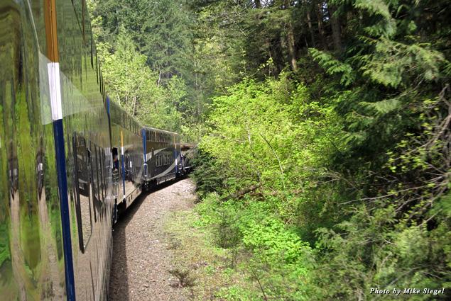 Glimpses of greenery alongside the Rocky Mountaineer tracks