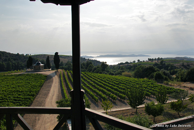 View from the Tsantali Winery