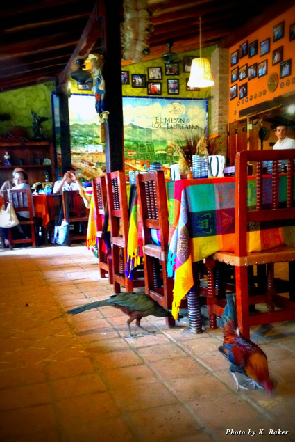 The dining room at El Meson