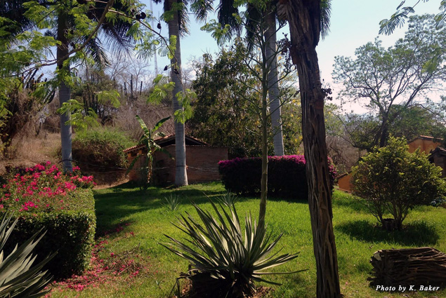 The green grounds of Los Osuna Distillery
