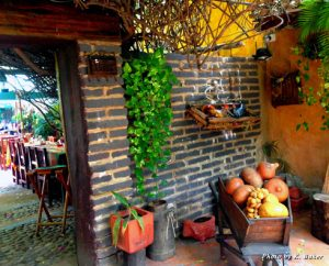 Plants and a cartful of colorful produce at the entry to El Meson
