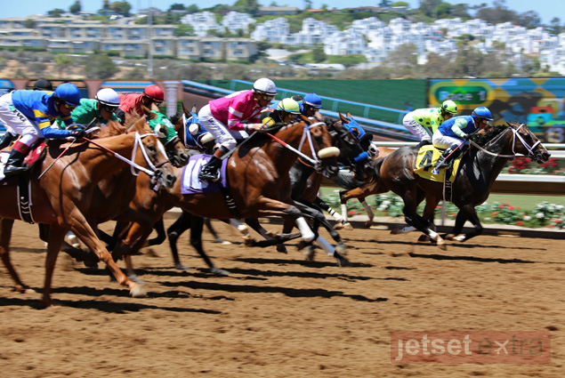 Horses race at the Del Mar Racetrack