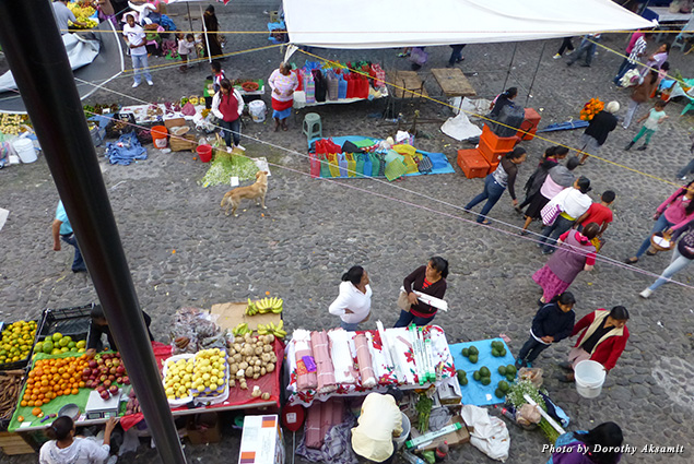 The daily market below my balcony in Posada Familiar
