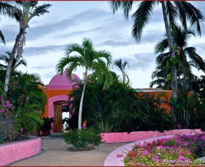 Domo Master Pink