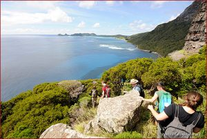 The view from the summit of Mt. Gower on Australia's Lord Howe Island