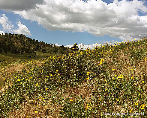 Curt Gowdy State Park offers a number of hiking and biking trails at various levels